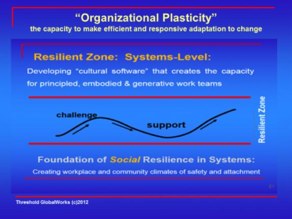 Organizational Plasticity